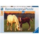 Ravensburger 14347 Schöne Pferde