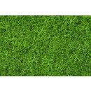 NOCH ( 07106 ) Wildgras, dunkelgrün, 6 mm 0,H0,TT,N