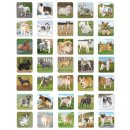 Lisciani (058075) Dogs Memo