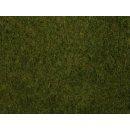 NOCH ( 07282 ) Wildgras-Foliage, olivgrün G,0,H0,TT,N,Z