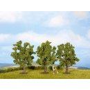 NOCH ( 25510 ) Obstbäume, grün, 3 Stück,...