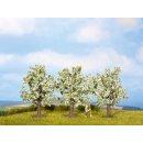 NOCH ( 25511 ) Obstbäume, weiß blühend, 3...
