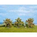 NOCH ( 25114 ) Orangenbäume, 3 Stück, 4 cm hoch...