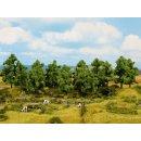 NOCH 24603 - Laubbäume 16 Stück, 4 -10 cm...