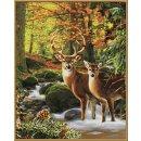 Schipper  609130810 - MNZ - Hirsche im Wald