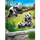 PLAYMOBIL 70353 2 Pandas mit Baby
