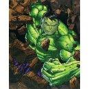 PRACHT CD-130500210 - DIAMOND DOTZ Marvel Avengers Hulk...