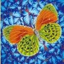 PRACHT DD5-022 - DIAMOND DOTZ Schmetterling gelb...
