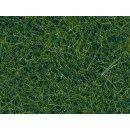 NOCH 07120 - Wildgras dunkelgrün, 9 mm, 50 g 0,H0,TT