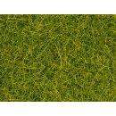 NOCH 08363 - Streugras hellgrün, 4 mm, 20 g 0,H0,TT,N,Z