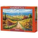 Castorland C-300587-2 Vineyard Hill , Puzzle 3000 Teile