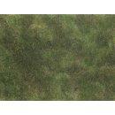 NOCH 7251 - Bodendecker-Foliage olivgrün...