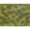 NOCH 7253 - Bodendecker-Foliage grün/beige...