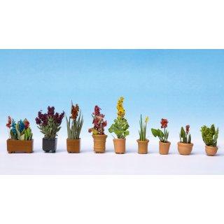 NOCH ( 14012 ) Zierpflanzen in Blumentöpfen H0