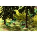 """NOCH 60772 Vegetations-Startset """"Im Wald"""