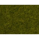 NOCH ( 07100 ) Wildgras Wiese, 6 mm 0,H0,TT,N