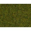 NOCH ( 50220 ) Streugras Wiese, 2,5 mm H0,TT,N,Z